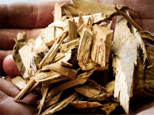 Wood chip biomass fuel could fuel the growth of biomass industry in China