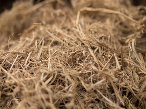Wheat straw biomass in China is under utilized